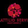 Attilio Servi